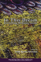 In This Dream Everything Remains Inside